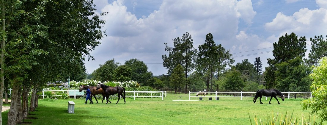 Beaulieu Country Estate | Property for Sale | Pam Golding Properties