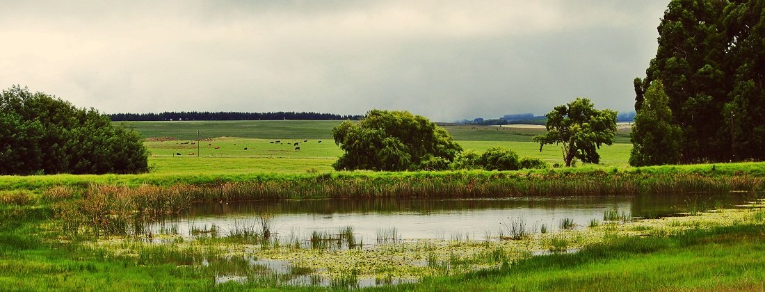 Dullstroom Farms and Properties for Sale | Pam Golding Properties