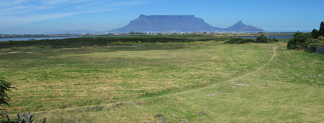 Flamingo Vlei Property | Houses for Sale in Blouberg | Pam Golding Properties