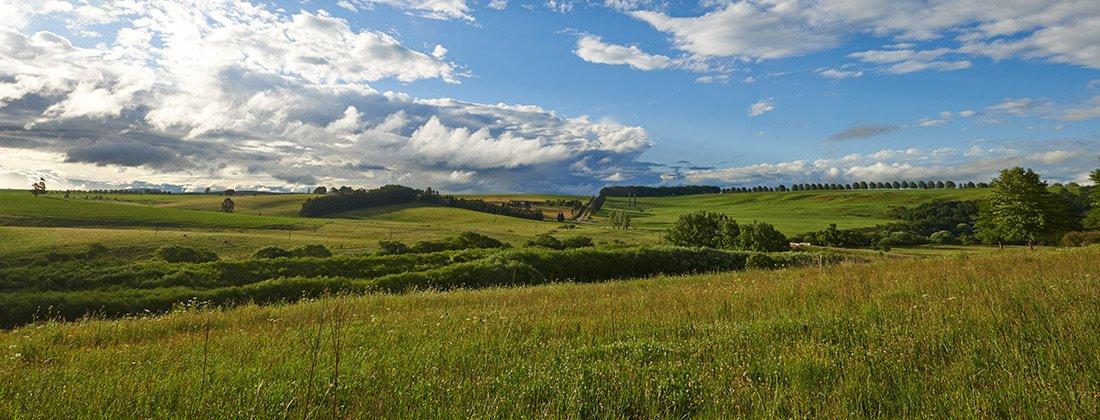 Giants View Estate | Rosetta | Developments for Sale | Pam Golding